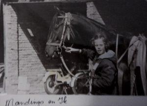 PaardenInzicht jong geleerd