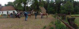 Tarieven PaardenInzicht