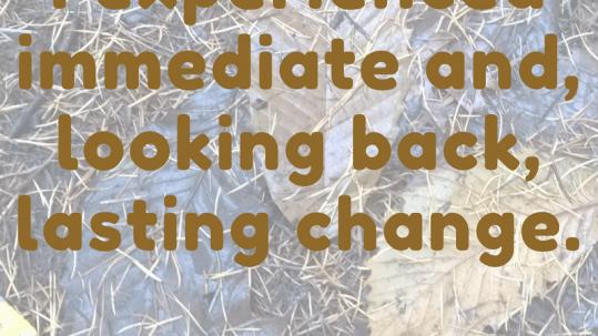 Immediate and lasting change www.paardeninzicht.nl