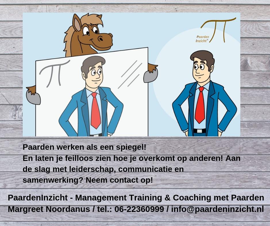 www.paardeninzicht.nl